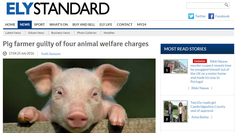 Pig farmer guilty of four animal welfare charges