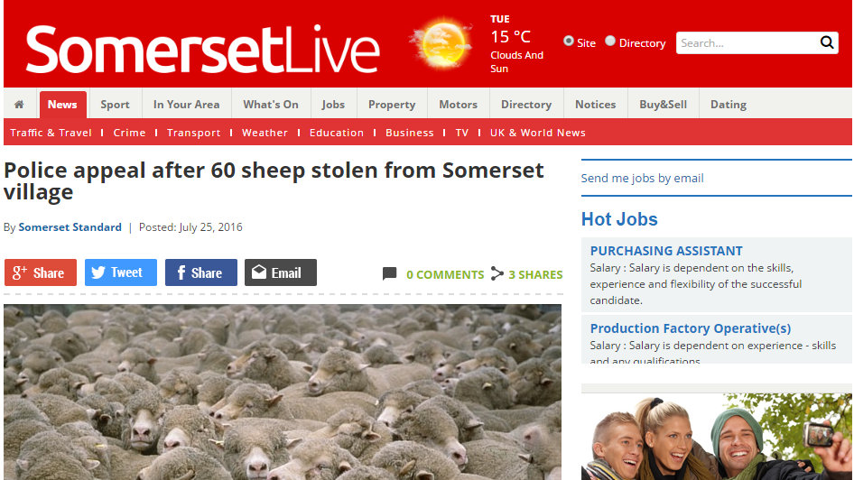 Police appeal after 60 sheep stolen from Somerset village