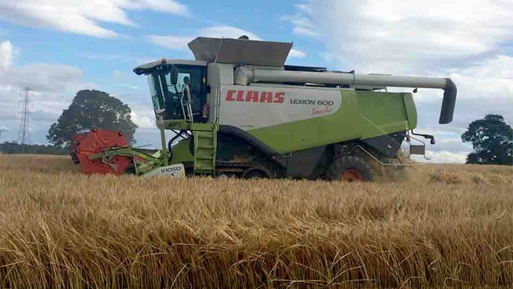 Barley coming off at 17.5 per cent moisture in Northumberland - James Walby