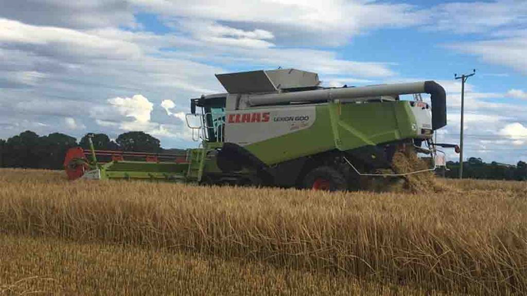First reported barley harvest in Northumberland from James Walby - yielding around 4t/ha