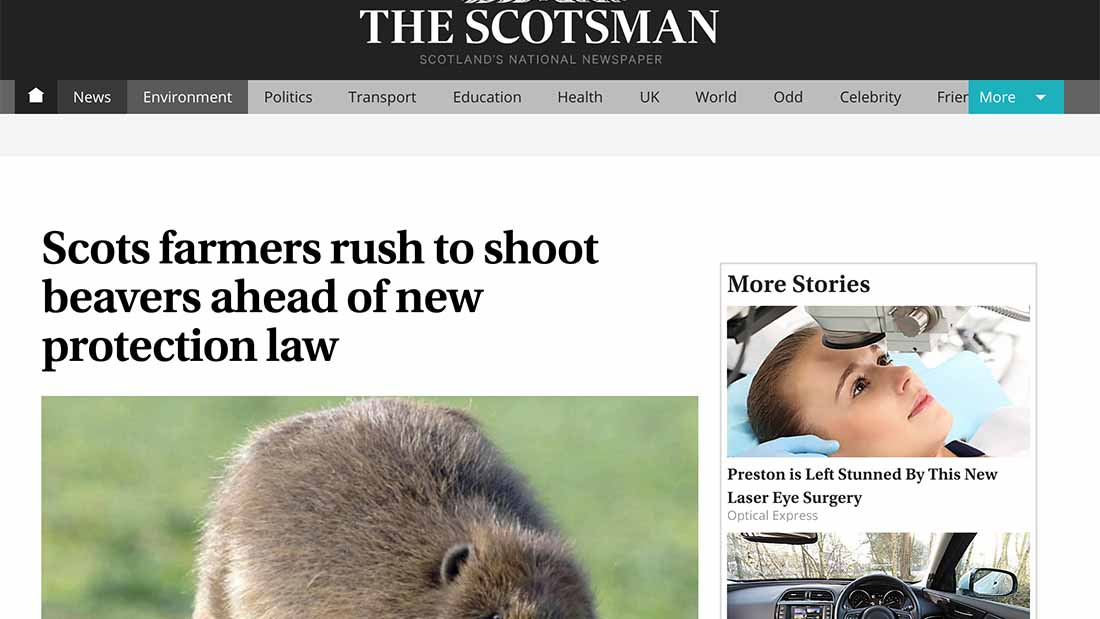 Scots farmers rush to shoot beavers ahead of new protection law