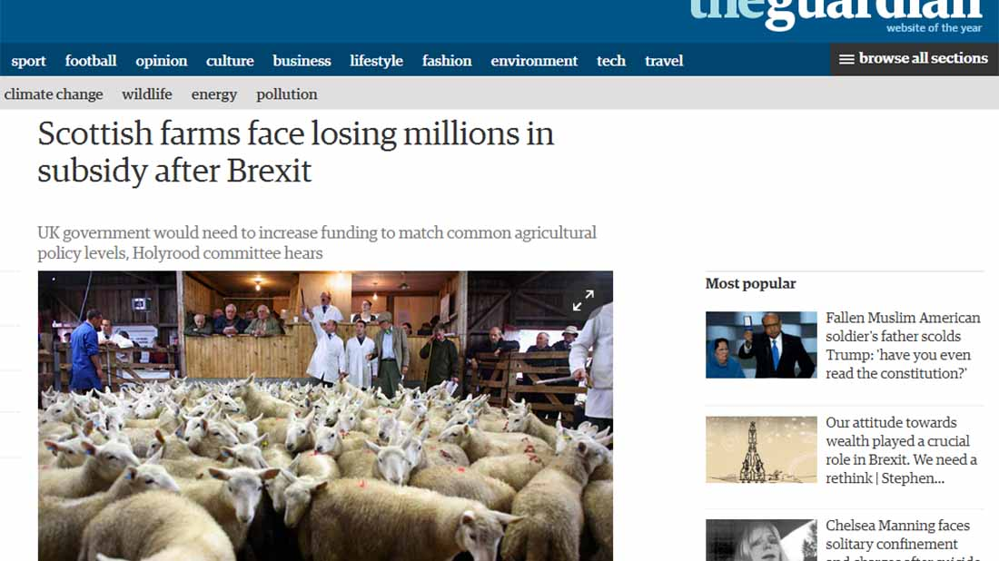 Scottish farms face losing millions in subsidy after Brexit