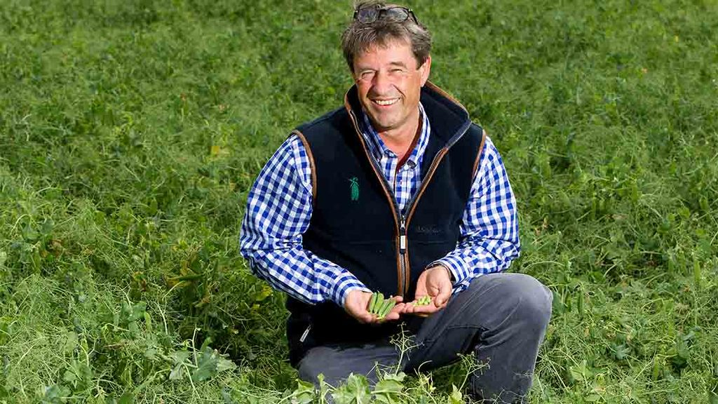 One man and 10,000 tonnes of peas