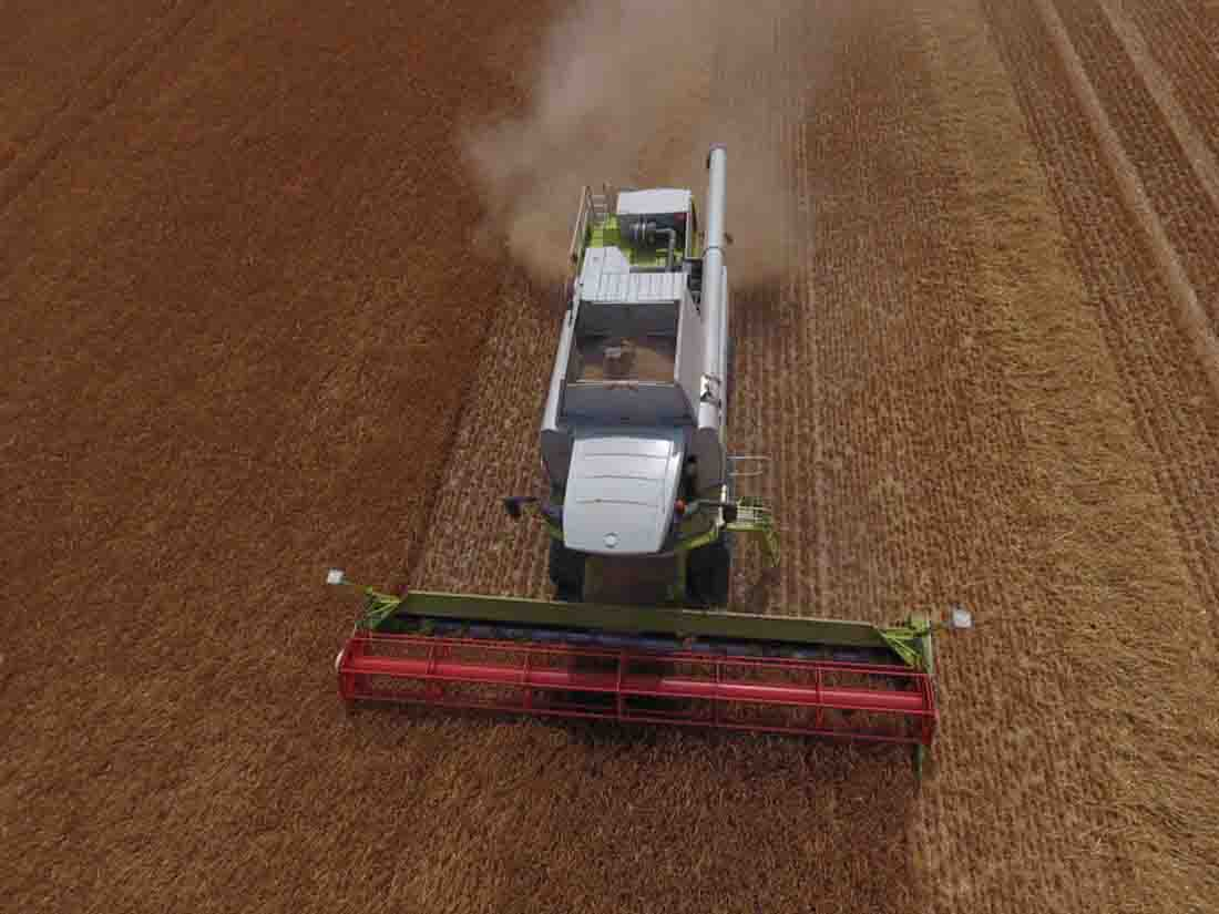 Birds-eye view of harvest in Wiltshire - Todd Jex