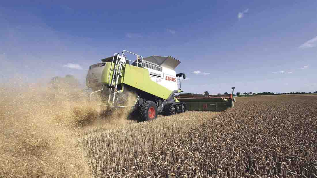 Harvest progress brings yield improvement