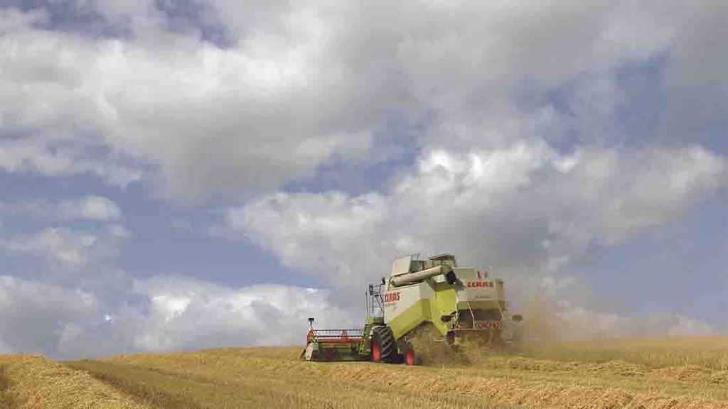 Harvest 2019: RL winter barley yields close to five-year average