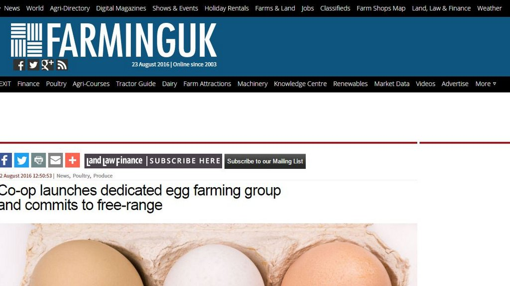 Co-op launches dedicated egg farming group and commits to free-range