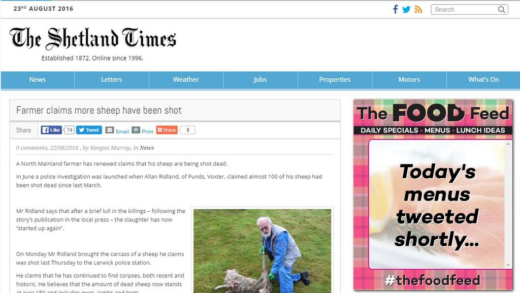 Farmer claims more sheep have been shot