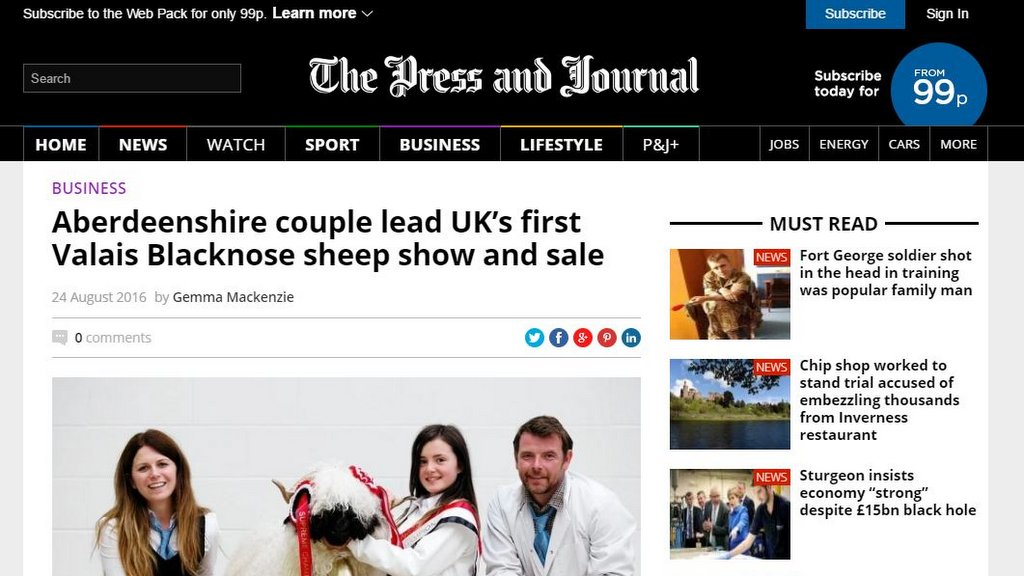Aberdeenshire couple lead UK's first Valais Blacknose sheep show and sale