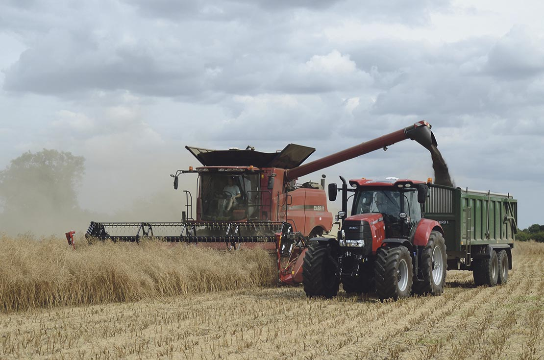 OSR Yield Enhancement Network launched