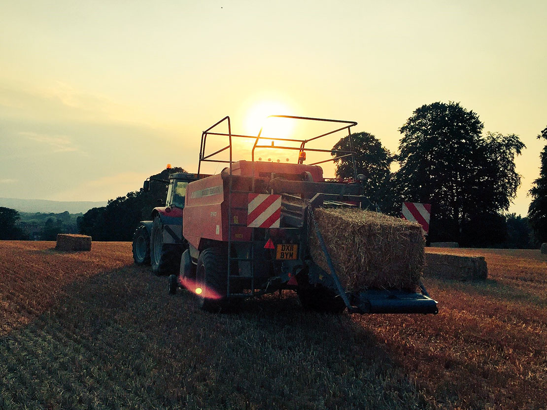 Farm 24 twitter post - 'Enough. 568 bales today. Been a long ol' day' - Will Evans
