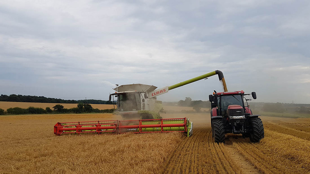 Barley harvest at Heathcote Farms, Bedfordshire - Andrew Robinson