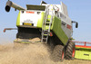 Spreading OSR straw - Mick Vardy