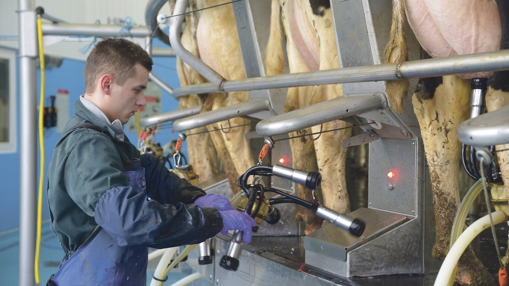 Brexit will be 'game changer' for UK dairy industry