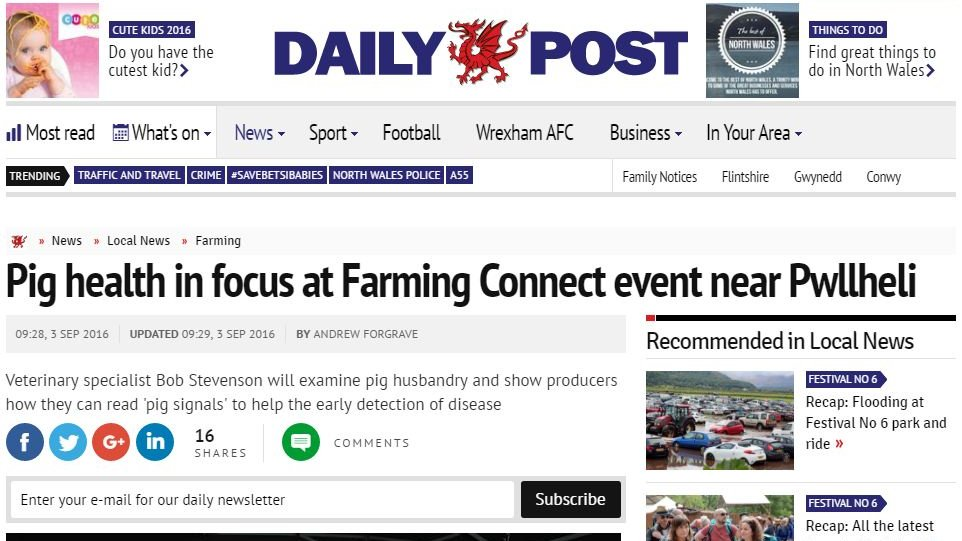 Pig health in focus at Farming Connect event near Pwllheli