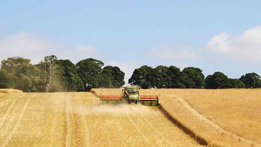Fine weather aids harvest progress
