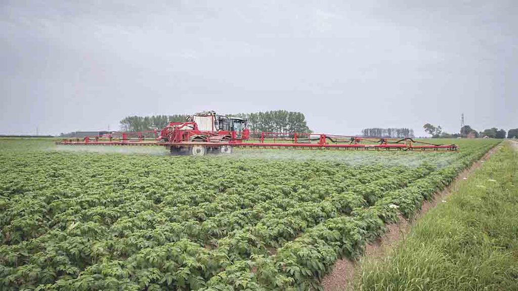 AHDB secure raft of emergency crop protection authorisations