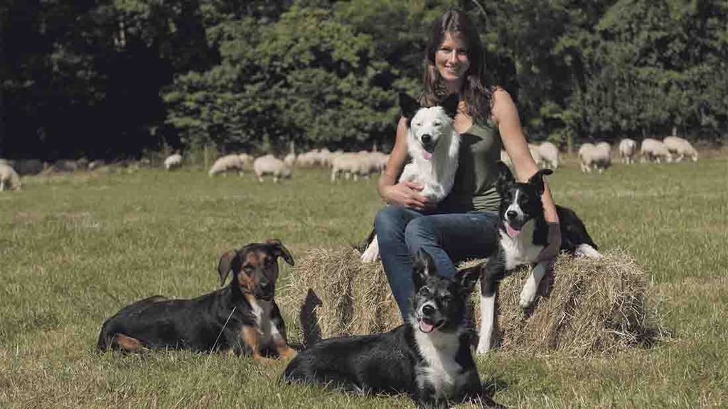 'I'm just trying to be the best I can be' - switching from life in London to farming in Devon