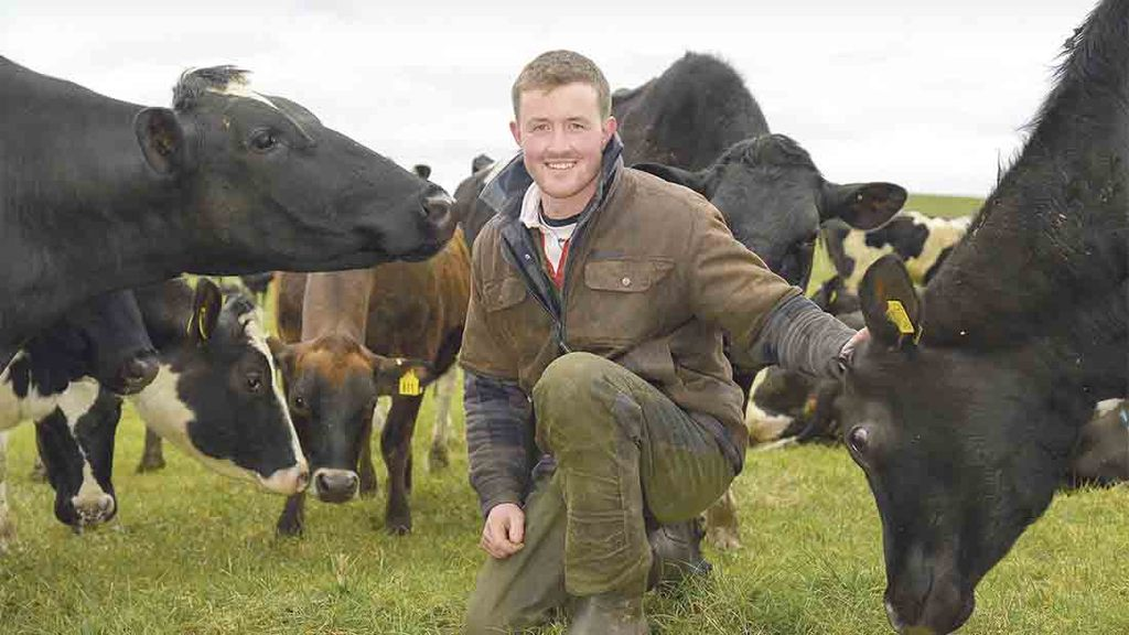Profit from grass: A look ahead for Profit from Grass farmers