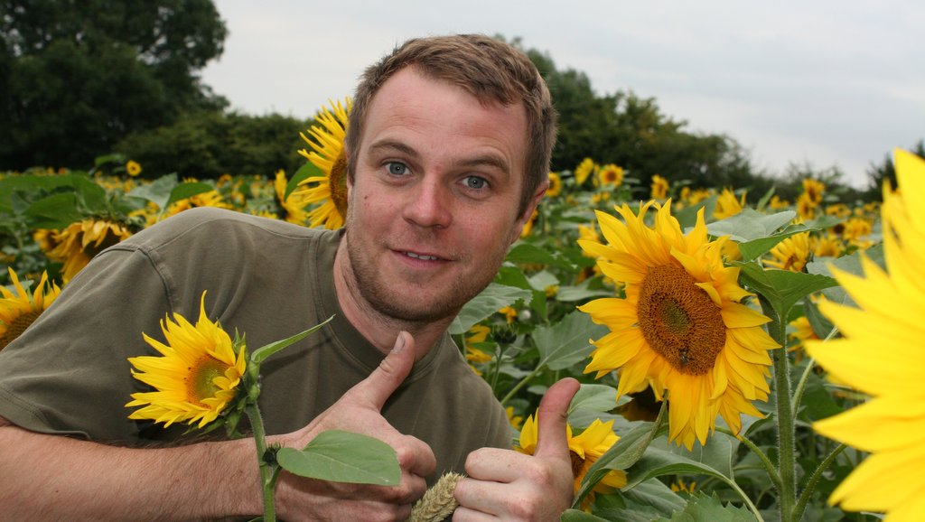 Merseyside farmer plants sunflowers for charity