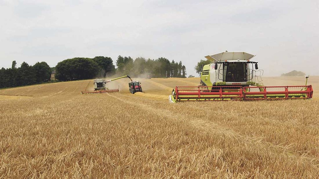 Defra stats show UK wheat production down 5% and barley down 8%