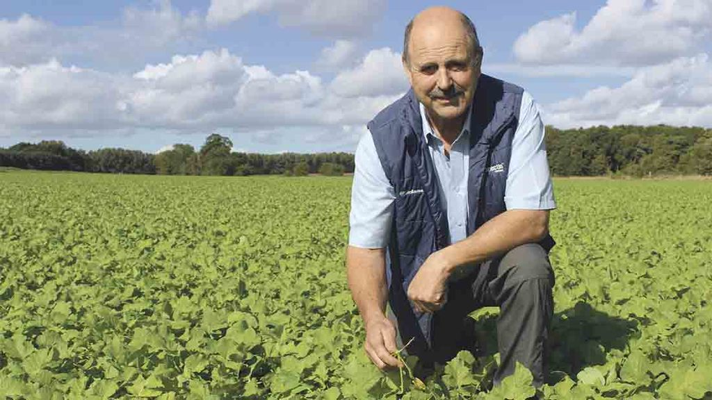 Novel BCN control approach delivers beet yield boost