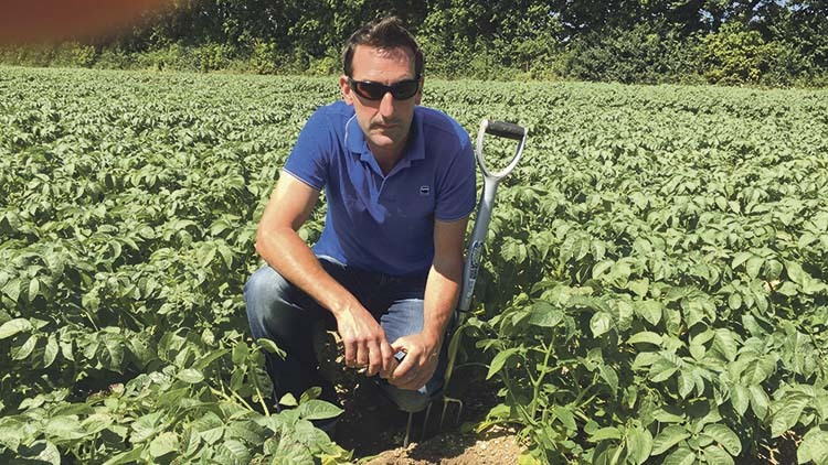 CropTec Preview: Winning the weed control battle
