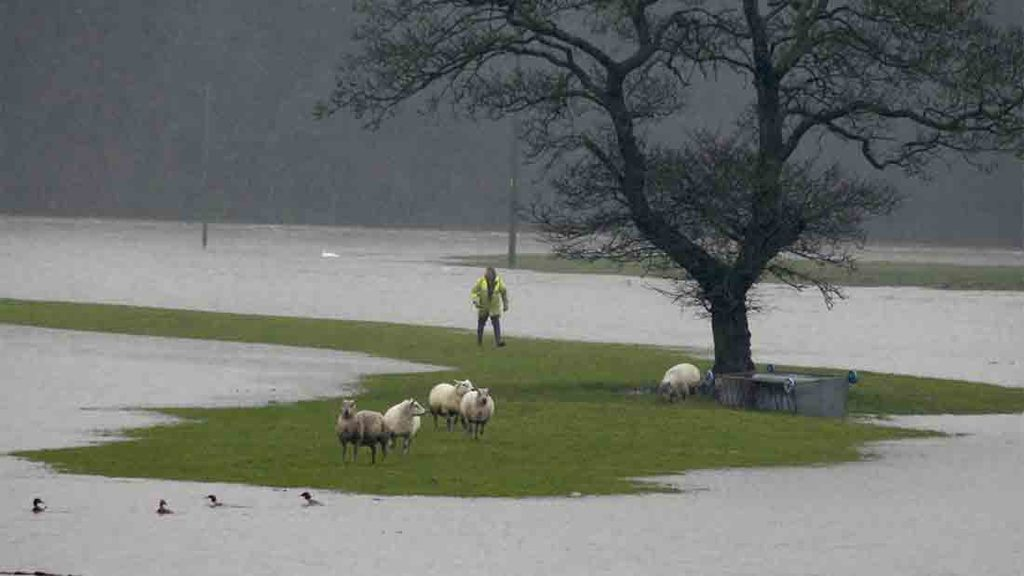Farmers urged to apply for flood funding before deadline at the end of the year