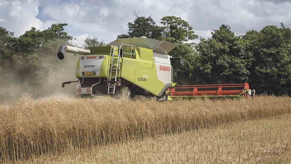 Harvest 2017: Variable yields create winners and losers