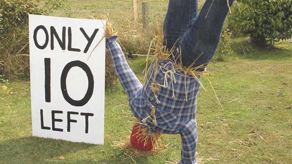 Campaigners have made scarecrows to show their support for the farm