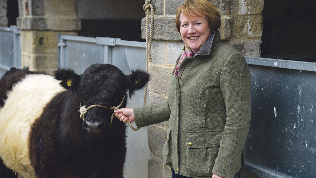 Christine Ryder: 'The cows and calves have gone up to the moor and the sheep to the lowland'