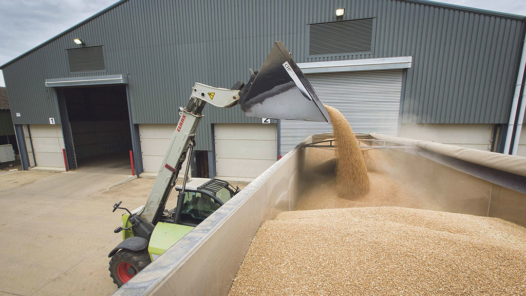UK feed wheat records first annual average price increase since 2012