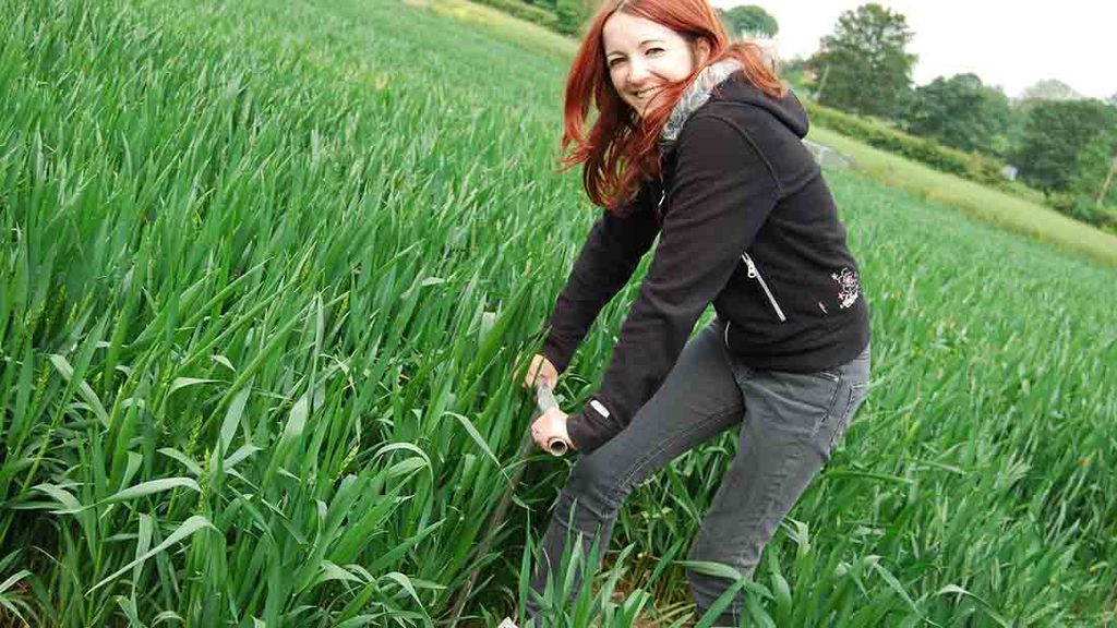 Students work to tackle farming challenges