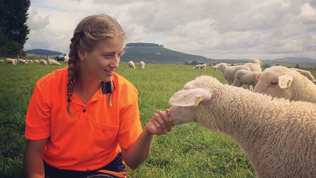 Young Farmer Focus: Sophie Barnes, Taupo, New Zealand
