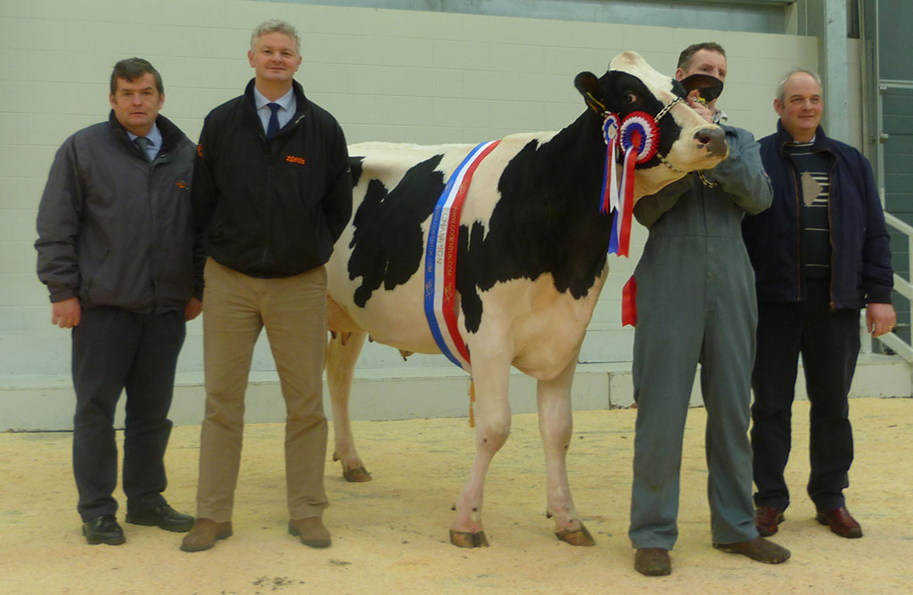 Reserve champion heads Holstein trade at Carlisle