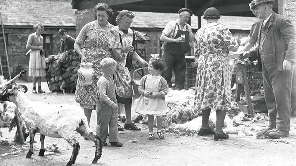 Wives and children helping to feed clippers
