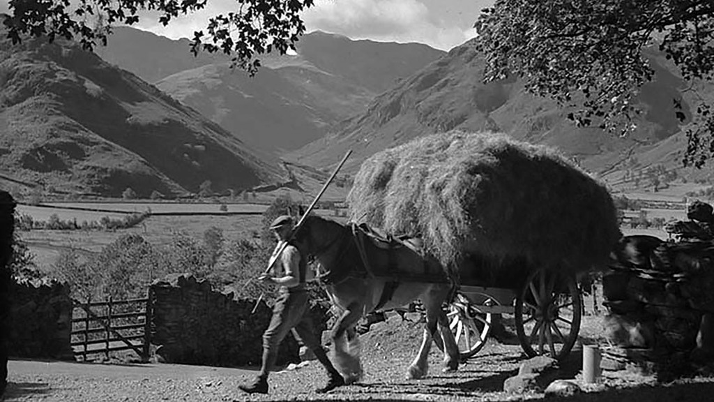 A typical early farming scene Lakeland