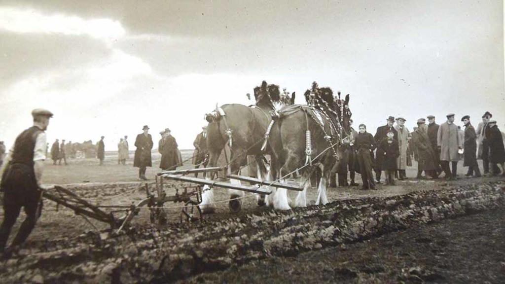 Ploughing match at Skelton, Cumbria, in 1943