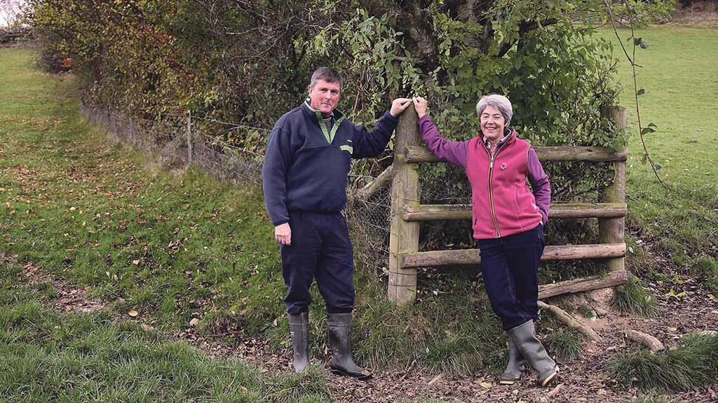 Welsh farmers bring hills to life with hydroelectricity