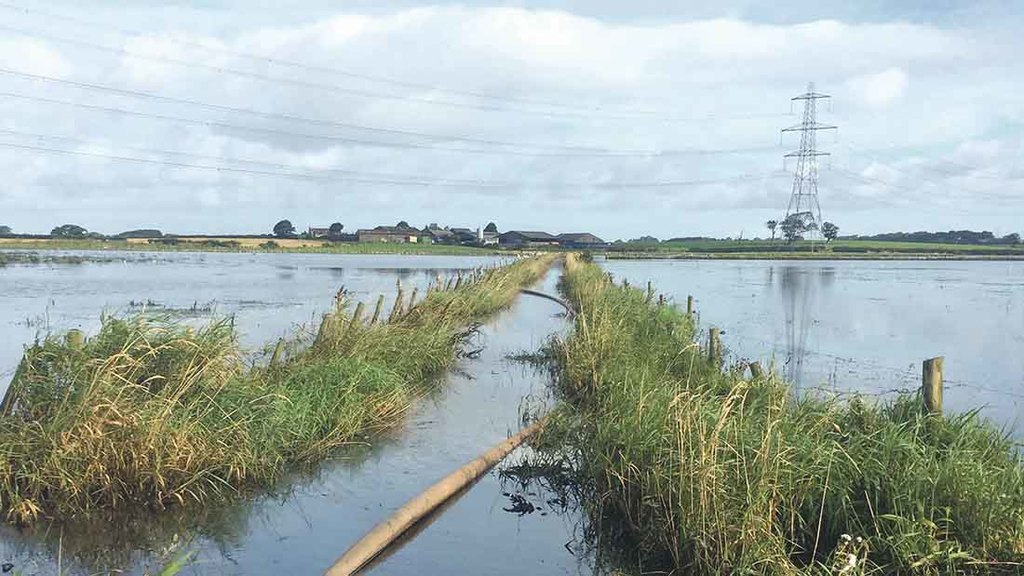 Farmers urged to check storm damage cover