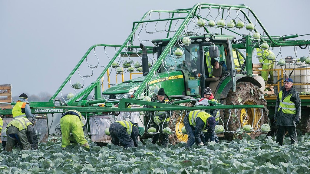 The farming industry's reliance on migrant labour - from dairy to horticulture