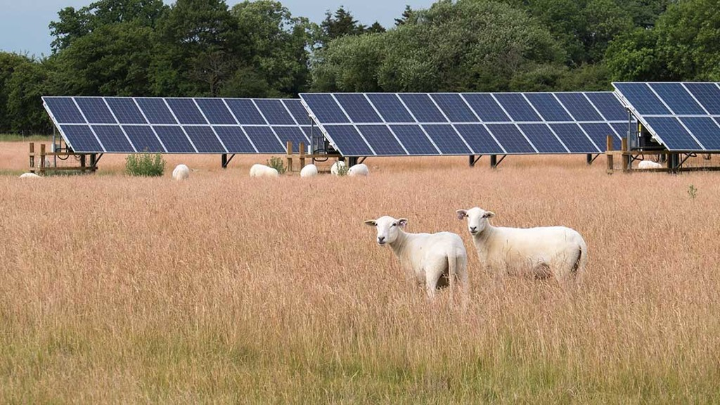Renewable energy helping farmers increase efficiency