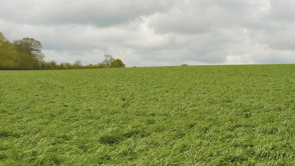 How to manage a soil makeover insights farmers guardian for 98 soil compaction
