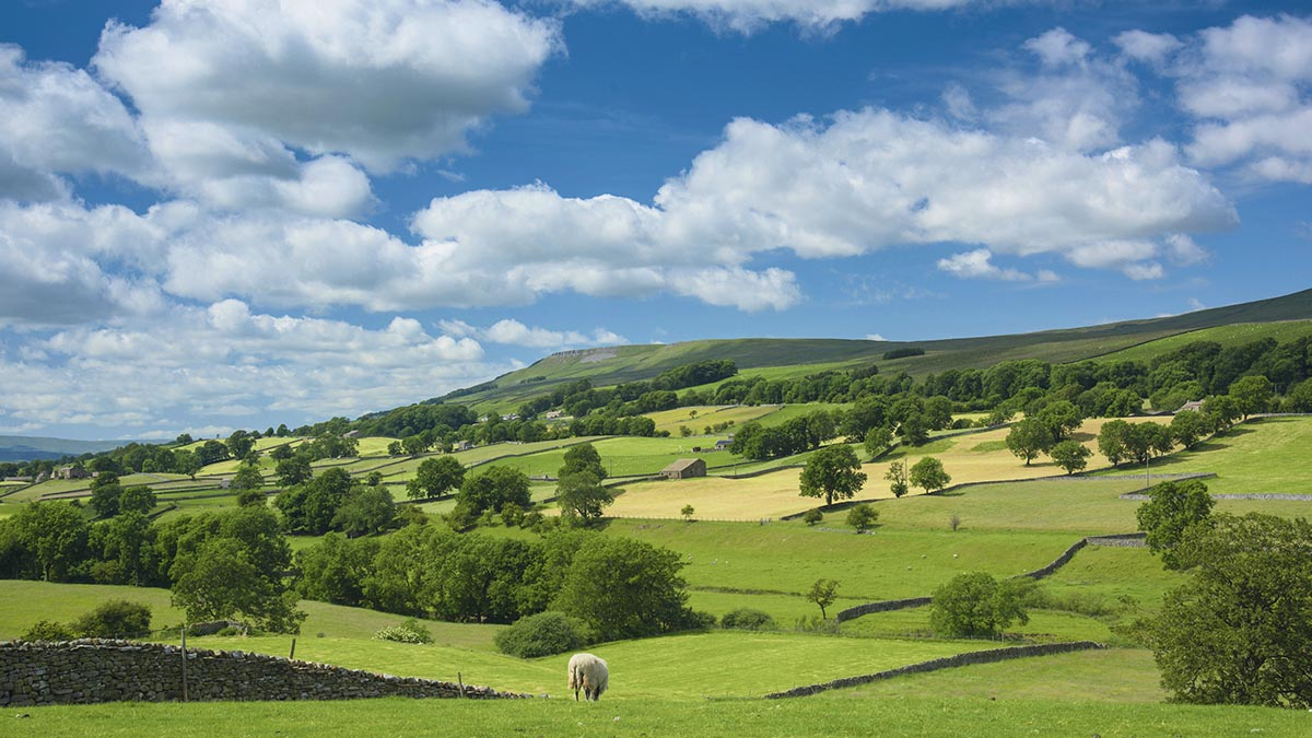 Concerns over National Parks extension continue as farmer resigns from panel