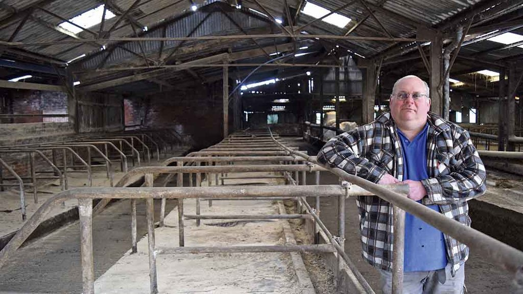 Dairy farmer describes horror of losing pedigree Guernsey herd to bovine TB