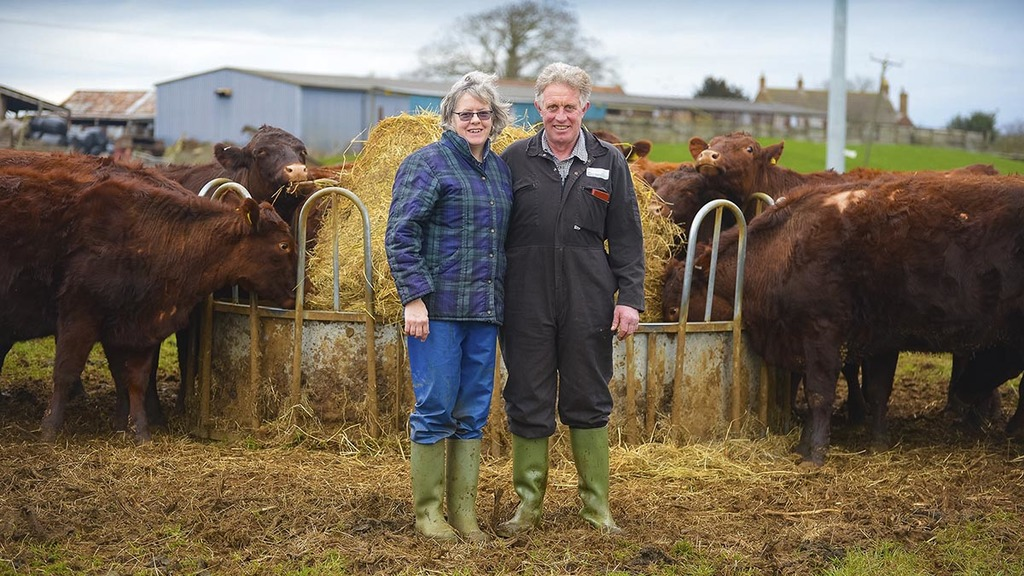 Red Polls revive a traditional cheese