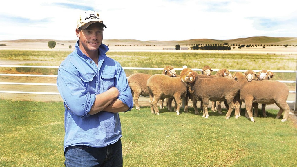 Australia's largest Merino outfit set to become bigger