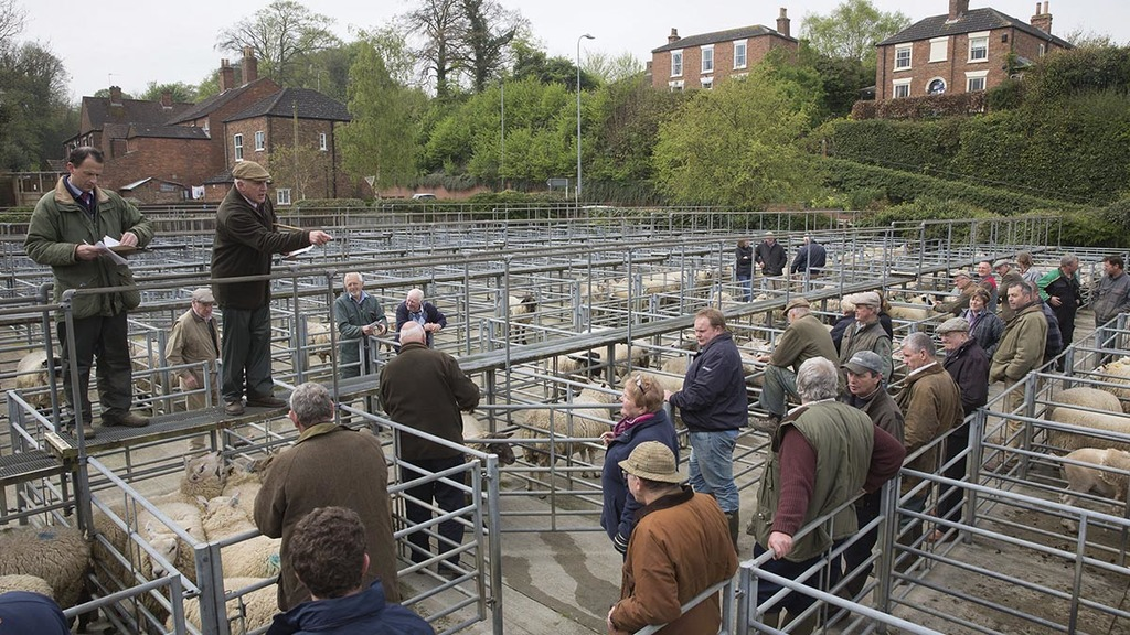 'It could close by Christmas' - farmers urged to get behind mart following council decision