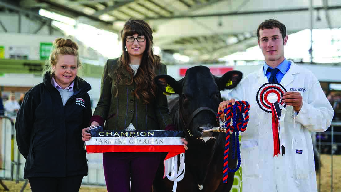 Beef bids to £1,500 at Devon YFC show and sale