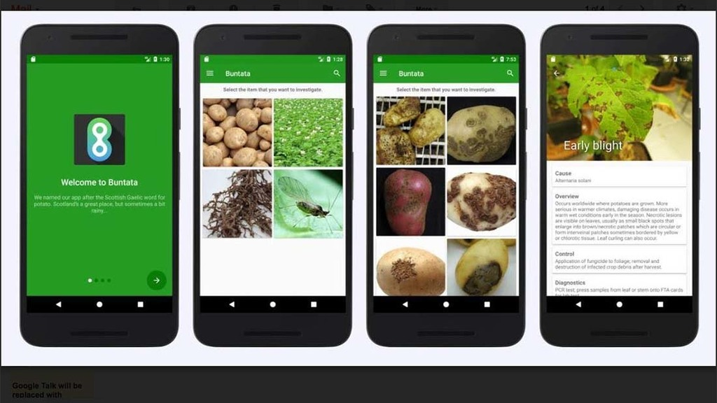 Buntata, a new tool to identify potato pests and diseases